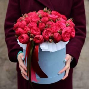 Коробка 15 красных кустовых пионовидных роз R751