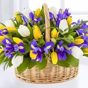 Разноцветные тюльпаны и ирисы в корзине R289