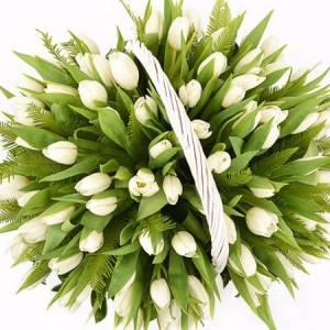 101 белый тюльпан в корзине R291